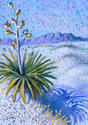 White Sands, Winter Yucca